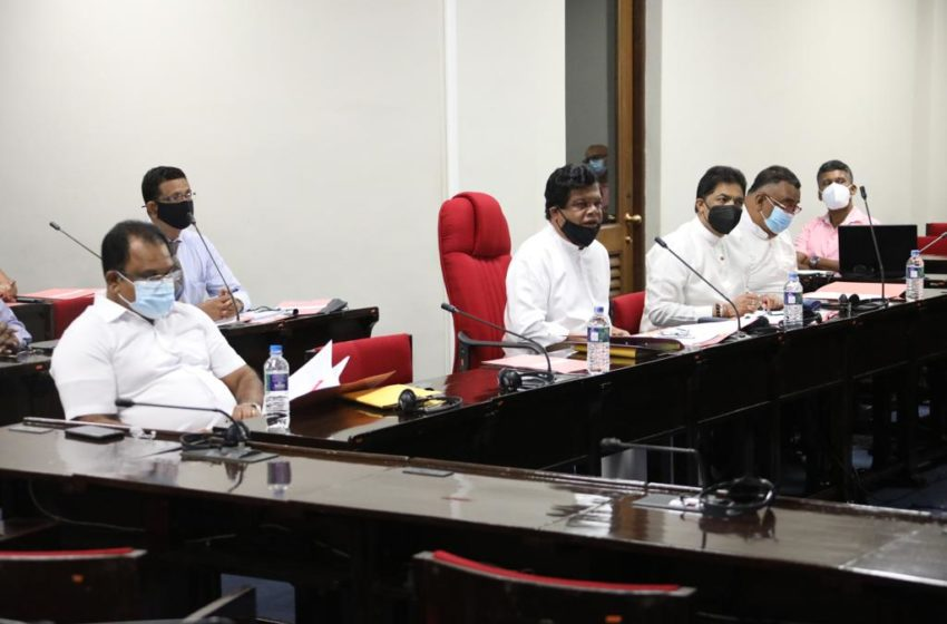 Consultative Committee on Trade agreed to submit an order under the Sri Lanka Export Development Act